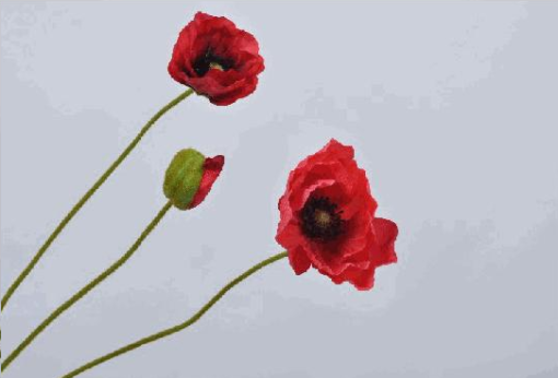coquelicot rouge artificiel